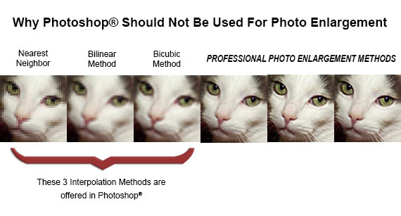 Why Photoshop Should Not Be Used for Photo Enlargement