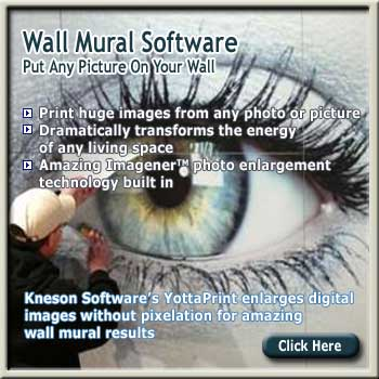 Wall Mural Software